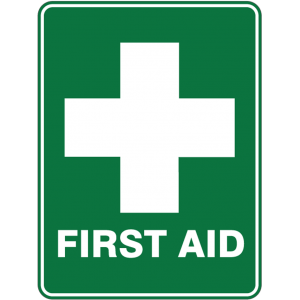 emergency first aid training course